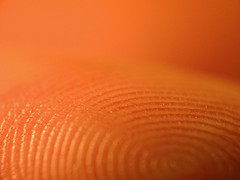 Biometrics and the Mac